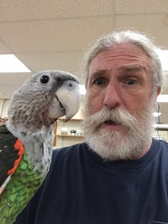 Birds Unlimited Webster, New York Webster, NY Store and